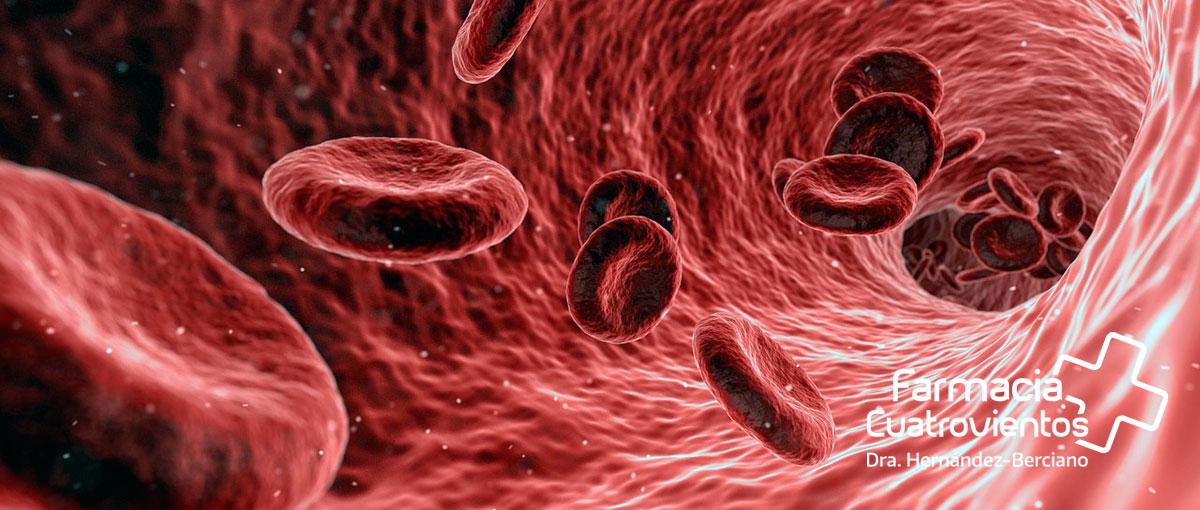 Hemofílicos y portadores de la hemofilia