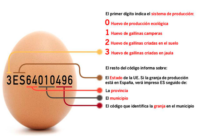 Trazabilidad en los huevos